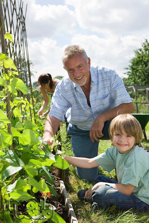 Boy gardening with grandfather portrait