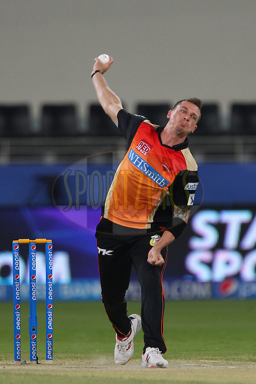 Dale Steyn of the Sunrisers Hyderabad during match 20 of the Pepsi Indian Premier League Season 2014 between the Mumbai Indians and the Sunrisers Hyderabad held at the Dubai International Stadium, Dubai, United Arab Emirates on the 30th April 2014<br /> <br /> Photo by Ron Gaunt / IPL / SPORTZPICS