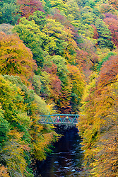 Pitlochry, Scotland, United Kingdom, 10th October 2018.  Spectacular autumn colours in the trees surround a small footbridge crossing the River Garry at Killiecrankie, the famous Perthshire beauty spot.