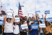 A Group of Supporters Holding Their Bernie Signs at an Outdoor Rally
