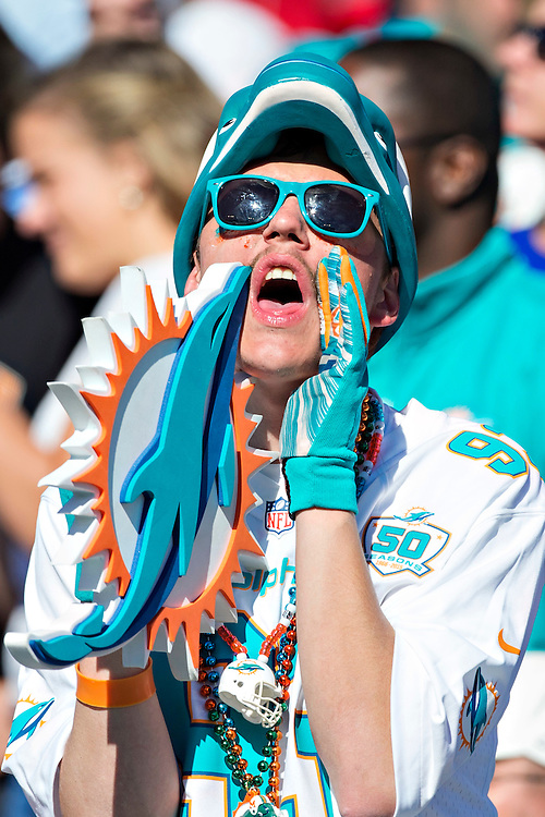 NASHVILLE, TN - OCTOBER 18:  Fan of the Miami Dolphins yells for his team during a game against the Tennessee Titans at LP Field on October 18, 2015 in Nashville, Tennessee.  The Dolphins defeated the Titans 38-10.  (Photo by Wesley Hitt/Getty Images) *** Local Caption ***