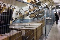 AFrica Museum Tervuren.Bezoek aan de opslag kelders mogelijk ihkv de expo UNCENSORED, voor de grote verbouwing van het museum begint. Vrouw bekijkt de opslag in de kelders van het museum.
