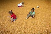 Nederland, Malden, 14-7-2007..Op de speelboerderij van de familie Hopman kunnen kinderen, peuters, spelen in een grote bak mais. ..Foto: Flip Franssen