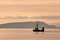 Fishing boat silhouetted off Point Holmes, Vancouver Island   Photo: Peter Llewellyn