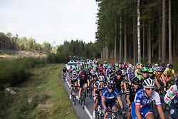 The peloton ascends a small, uncategorised climb on Stage 2 of the Ladies Tour of Norway - a 140.4 km road race, between Sarpsborg and Fredrikstad on August 19, 2017, in Ostfold, Norway. (Photo by Balint Hamvas/Velofocus.com)