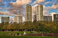 Bellevue Towers & Downtown Park