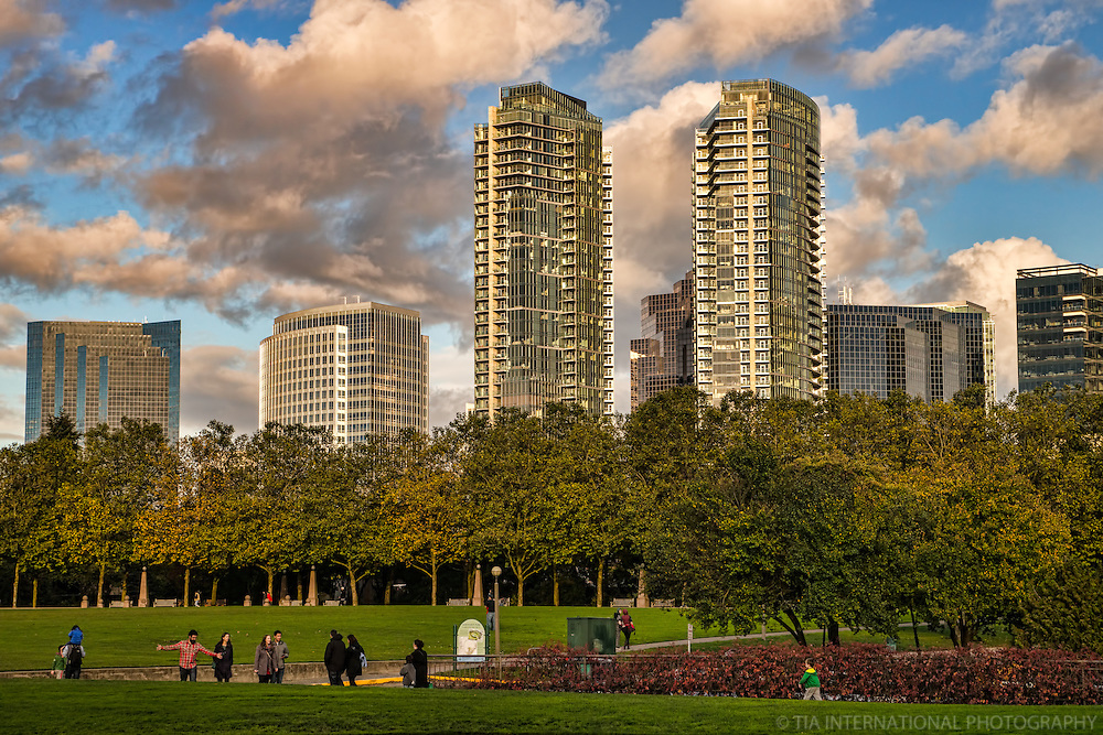 Bellevue Towers & Downtown Park