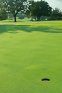 Golf Course management and turf management.