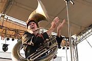 Mucca Pazza live in concert at the Nelsonville Music Festival 2012, concert photography by Akron music photographer, Cleveland music photographer Mara Robinson