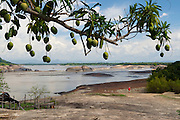 Orinoco River Basin near the Ventanas boulder field - Colombia - South America