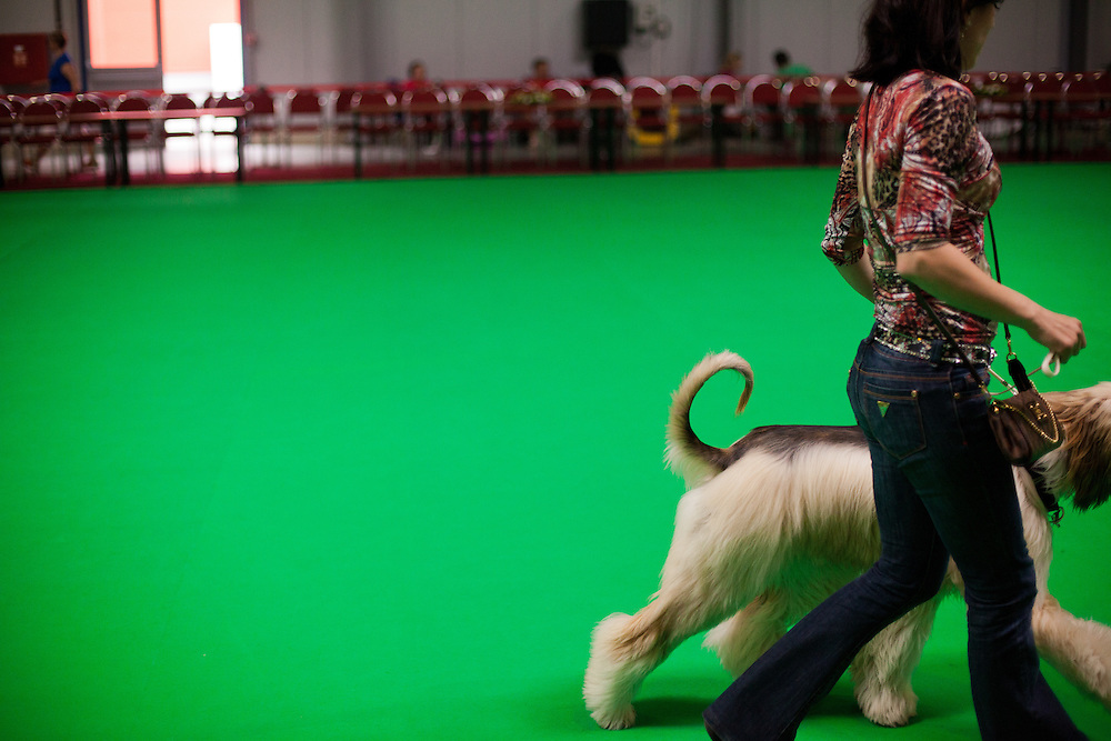 A woman with her  dog during the Prague Expo Dog Exhibition.
