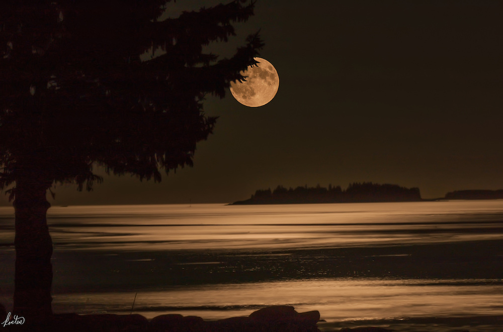 A SuperMoon rising over Mussel Ridge Channel, Penobscot Bay, Maine