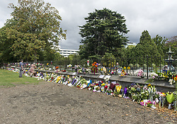 March 16, 2019 - Christchurch, Canterbury, New Zealand - Flowers, messages, songs and prayers were all offered up throughout the city in the wake of two mosque shootings that left as many as 49 people dead and dozens injured. Building in background is Christchurch hospital, where the wounded were taken. (Credit Image: © PJ Heller/ZUMA Wire)