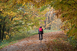 United States, Washington, Snohomish, bicycle rider on Centennial Trail in fall