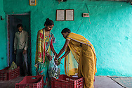 Collection centre owner Asha Devi (in red blouse), 25, packs a bag of okra before putting it on a delivery rickshaw at her collection centre in Machahi village, Muzaffarpur, Bihar, India on October 27th, 2016. Ganesh and his wife, Asha Devi, a producer group member, rent out a part of their house to be used as a collection centre for Producer Group farmers. Non-profit organisation Technoserve works with women vegetable farmers in Muzaffarpur, providing technical support in forward linkage, streamlining their business models and linking them directly to an international market through Electronic Trading Platforms. Photograph by Suzanne Lee for Technoserve