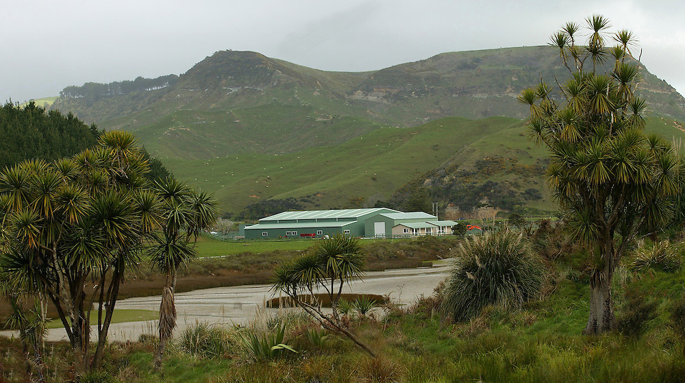 A giant indoor arena built by German land owner Karl Reipan on his Awakino property, New Zealand, October 28, 2005. The arena is used for horse eventing training as well as cattle sales and has its own quarantine station for his imported animals. Credit:SNPA / Rob Tucker