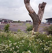 Derelict landscape of the former Hackney Wick greyhound and speedway stadium, demolished for the 2012 Olympics. The stadium opened in 1932 and was principally used for greyhound racing and speedway.