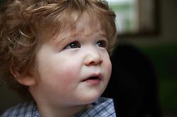 Portrait of baby boy gazing upwards,