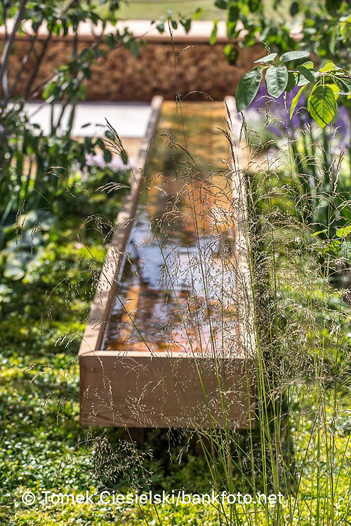 Geometrical water feature located under the perennials green carpet