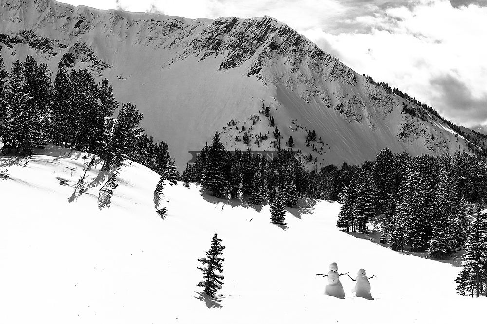 Snow Creatures in the Mountains in Montana.