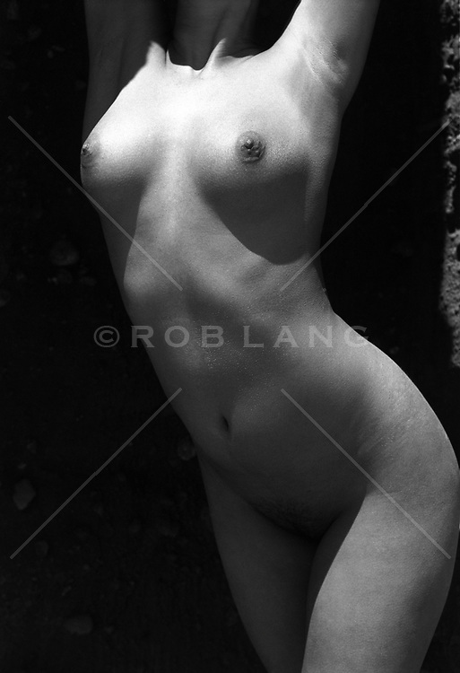 torso of a nude female torso