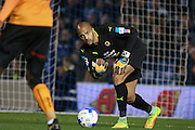 Wolverhampton Wanderers goalkeeper Carl Ikeme (1) during the EFL Sky Bet Championship match between Brighton and Hove Albion and Wolverhampton Wanderers at the American Express Community Stadium, Brighton and Hove, England on 18 October 2016. Photo by Bennett Dean.