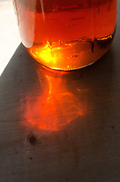 Sunlight casts amber patterns as it filters through a glass canning jar full of organic maple syrup, Bar Harbor, Maine.