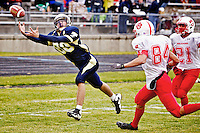 Timberlake's Mason Cramer reaches out for a pass that is just out of reach near the goal line during the fourth quarter.