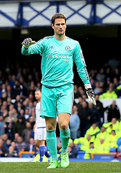Asmir Begovic of Chelsea  - Mandatory byline: Matt McNulty/JMP - 07966386802 - 12/09/2015 - FOOTBALL - Goodison Park -Everton,England - Everton v Chelsea - Barclays Premier League