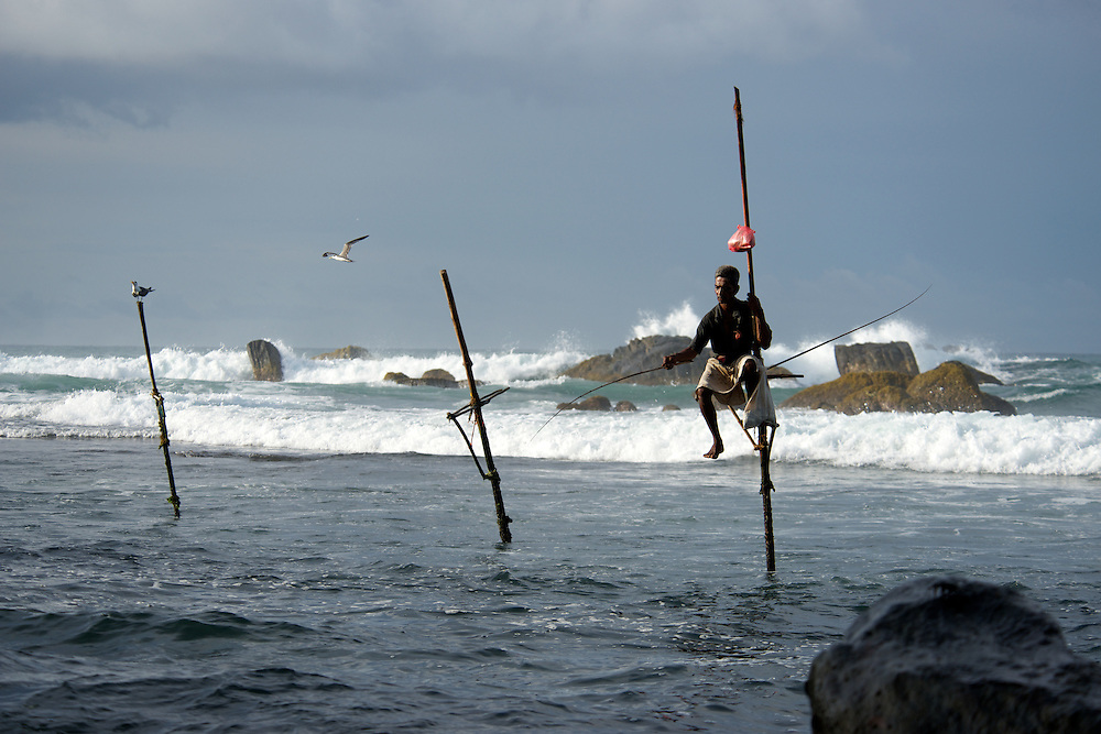 Stilt fishermen at dawn, Unawatuna, near Galle, Sri Lanka