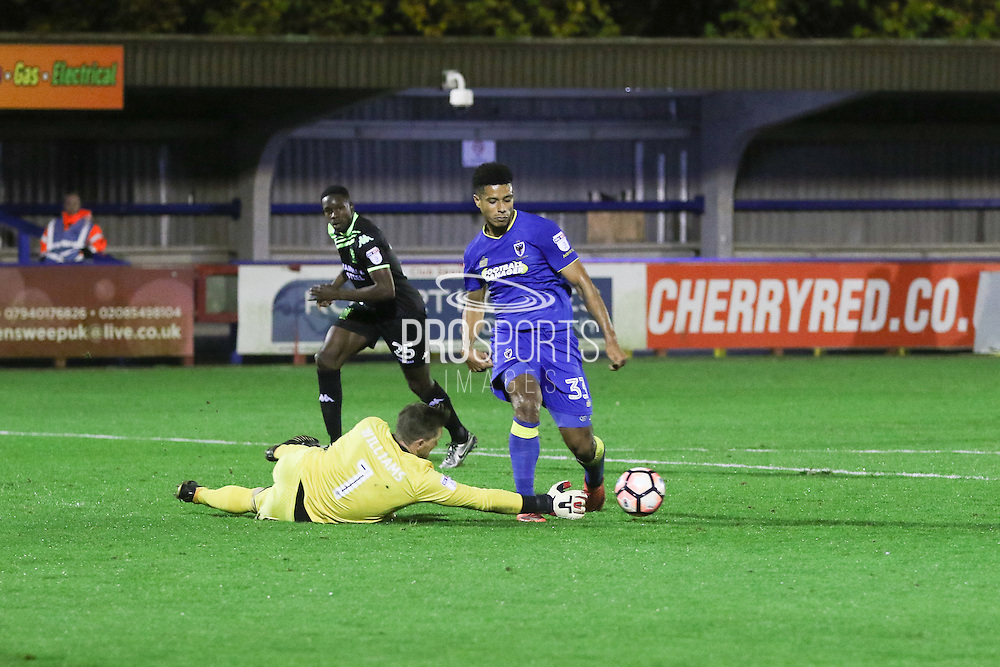 AFC Wimbledon striker Lyle Taylor (33) during the The Emirates FA Cup 1st Round Replay match between AFC Wimbledon and Bury at the Cherry Red Records Stadium, Kingston, England on 15 November 2016. Photo by Stuart Butcher.