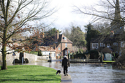 © Licensed to London News Pictures. 28/01/2014<br /> Wet and cold weather conditions continue across the UK.<br /> A man walking his dog along the Darent river, Eynsford,Kent.<br /> The river Darent water level in Eynsford,Kent remains high flooding parts of the Riverside at the Ford. <br /> Photo credit :Grant Falvey/LNP
