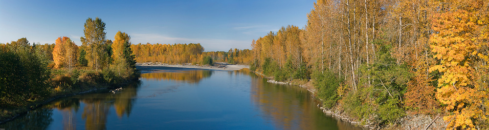 Nooksack River, Gold Trees, Reflection, Fall