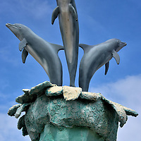 UNEXSO Dolphin Swim in Freeport, Bahamas<br />