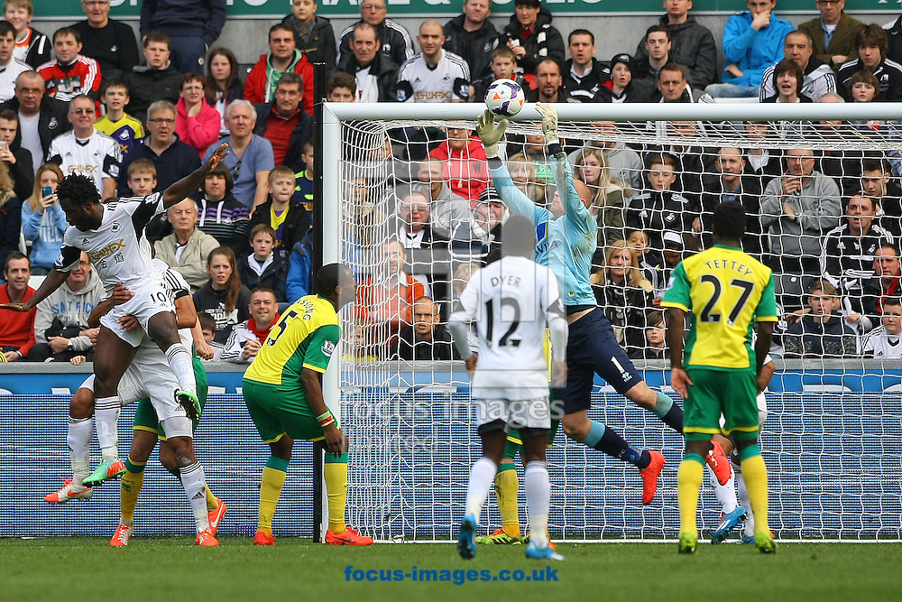 John Ruddy of Norwich saves from Wilfried Bony of Swansea during the Barclays Premier League match at the Liberty Stadium, Swansea<br /> Picture by Paul Chesterton/Focus Images Ltd +44 7904 640267<br /> 29/03/2014