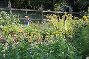 Talia Siegel runs through the garden at the Child Development Center. Photo by Ben Siegel/ Ohio University