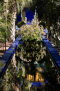 A cobalt blue reflecting polol surrounded by tropical plants in the Majorelle Garden in Marrakech, Morocco