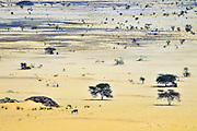 The vast sand plains of Bachik&eacute; dotted by the thorntrees entering the heart of the Ennedi region.<br /> <br /> Le vaste distese di sabbia punteggiate dalle acacie nel cuore dell'Ennedi