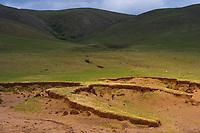 Bayanbulagu Gatcha, grassland steppe, Inner Mongolia, China