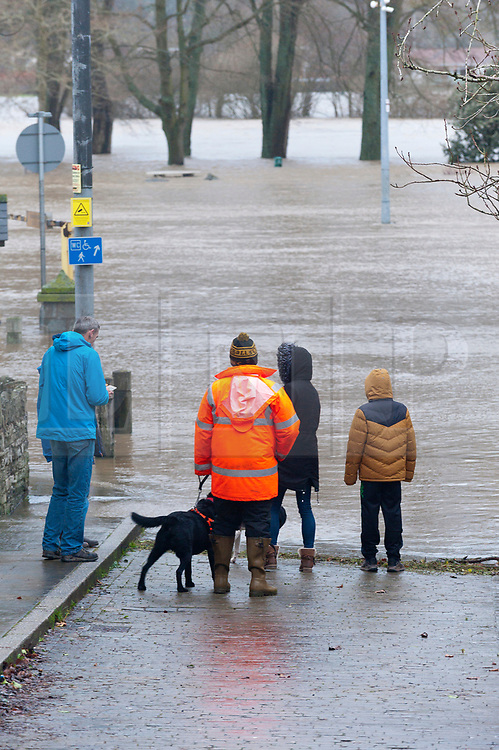 © Licensed to London News Pictures. 16/02/2020.  Builth Wells, Powys, Wales, UK. The river Wye bursts it's banks at Builth Wells in Powys, Wales, UK. after heavy rainfall yesterday and last night, causing the A483 road to be closed and traffic diverted. The river level broke the all-time high (5.05 m) at 08.30hrs  this morning at Builth Wells. According to Natural Resources Wales the highest recorded level at Builth Wells was 4.95m on 28/10/98 at 2:45 am (GMT) Photo credit: Graham M. Lawrence/LNP