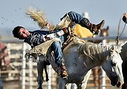 Scenes from the 28th Annual Burke Stampede Rodeo on Saturday night at the Burke, South Dakota Rodeo Arena in Burke. (Matt Gade / Republic)