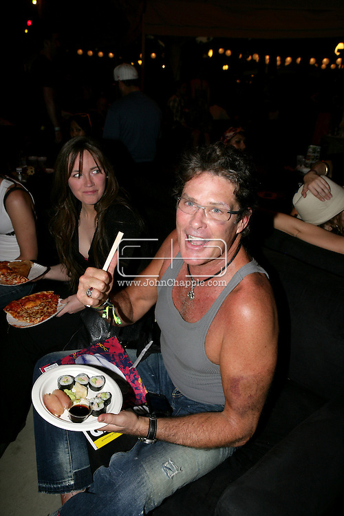 26th April 2008, Coachella, California. David Hasselhoff with a black eye and badly bruised arm, at the Coachella Music festival..PHOTO © JOHN CHAPPLE / DIGITAL BEACH MEDIA.tel: +1-310-570-9100.e: john@digitalbeachmedia.com.w: www.digitalbeachmedia.com