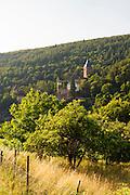 Landschaft mit Streuobstwiesen und Schloss Zwingenberg am Neckar, Baden-Württemberg, Deutschland | Landscape and Castle Zwingenberg am Neckar, Baden-Wurttemberg, Germany