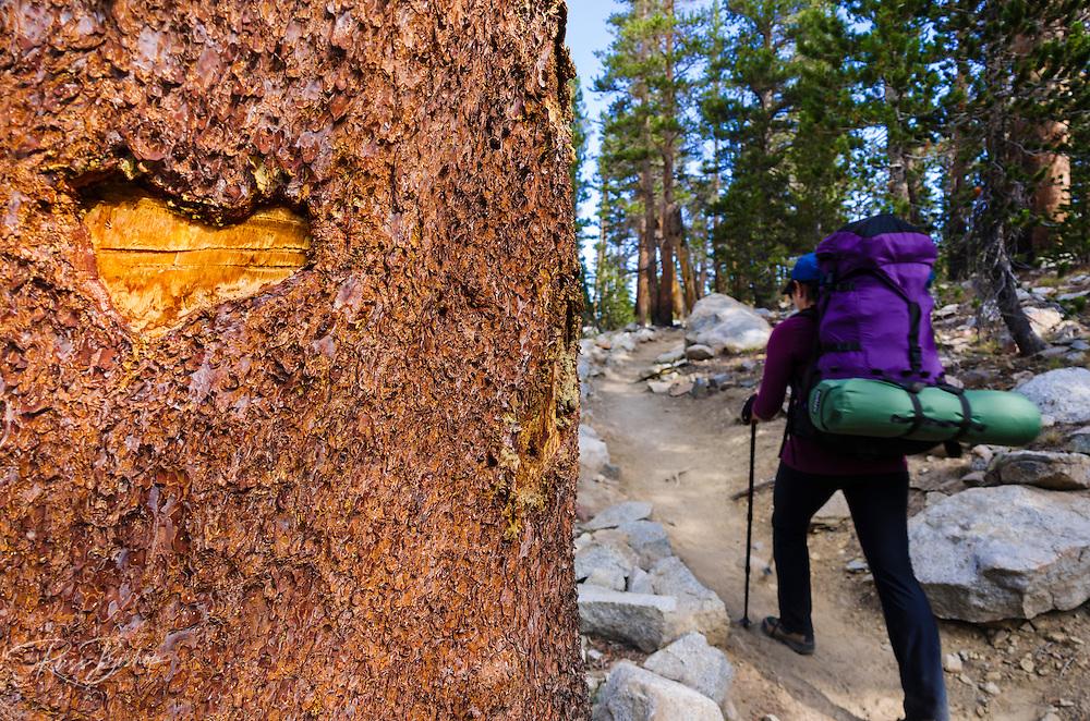 Trail blaze and backpacker on the Bishop Pass Trail, John Muir Wilderness, Sierra Nevada Mountains, California USA