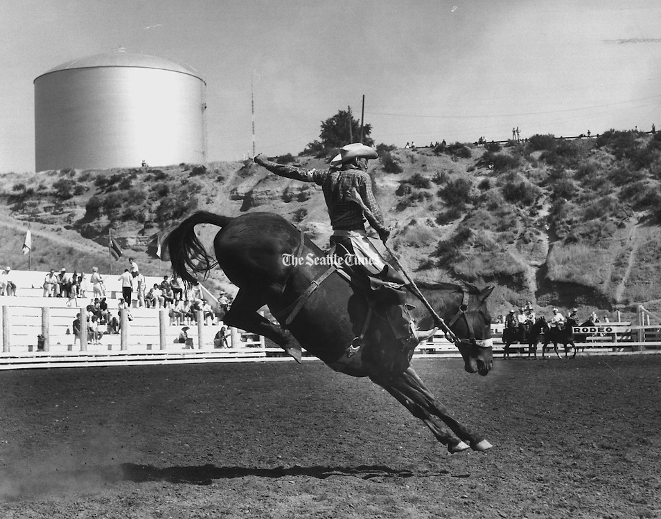 A wrangler from 0. K. Falls, B. C., stretched every ounce to stay on a mean saddle bronc, No Dice, in the opening moments of the El1ensburg Rodeo. At the completion of his ten-second ride, he was thrown to the ground and his mount flipped over on him. He escaped with bruises. (Johnny Closs / The Seattle Times, 1963)