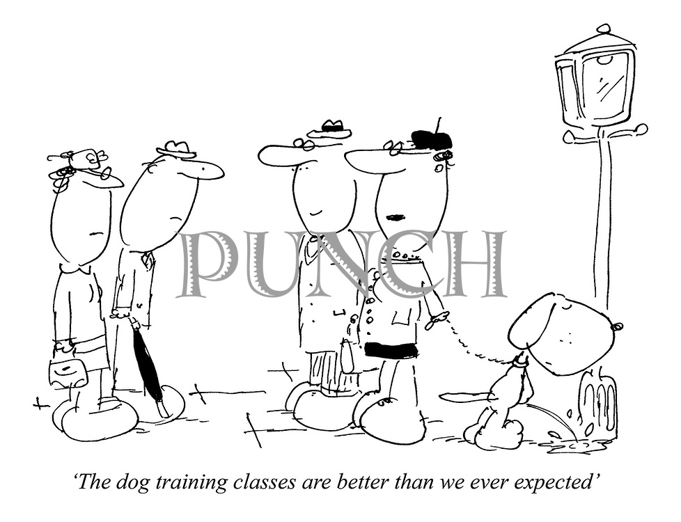 'The dog training classes are better than we ever expected'