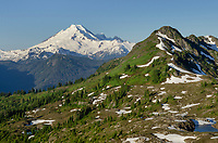 Mount Baker 10,781 ft (3,286 m) also known as Koma Kulshan or simply Kulshan, is an active glaciated andesitic stratovolcano  in the Cascade Volcanic Arc and the North Cascades of Washington in the United States