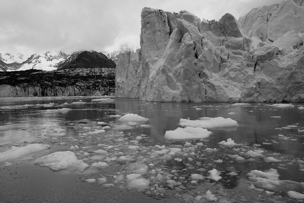 Antarctica, South Georgia Island (UK), Black and white image of icebergs floating in Cumberland West Bay near the tidewater face of Neumayer Glacier
