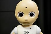 Roboten CommU (Communication Unity)<br /> ATR Hiroshi Ishiguro Laboratories<br /> <br /> The Robot CommU (Communication Unity)<br /> ATR Hiroshi Ishiguro Laboratories<br /> <br /> Fotograf: Christina Sj&ouml;gren<br /> Copyright 2018, All Rights Reserved