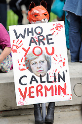 "© Licensed to London News Pictures. 29/05/2017. London UK. A demonstrator with a sign joins an ""Anti-Hunting March"" in central London, marching from Cavendish Square to outside Downing Street.  Protesters are demanding that the ban on fox hunting remains, contrary to reported comments by Theresa May, Prime Minister, that the 2004 Hunting Act could be repealed after the General Election.<br />  Photo credit : Stephen Chung/LNP"